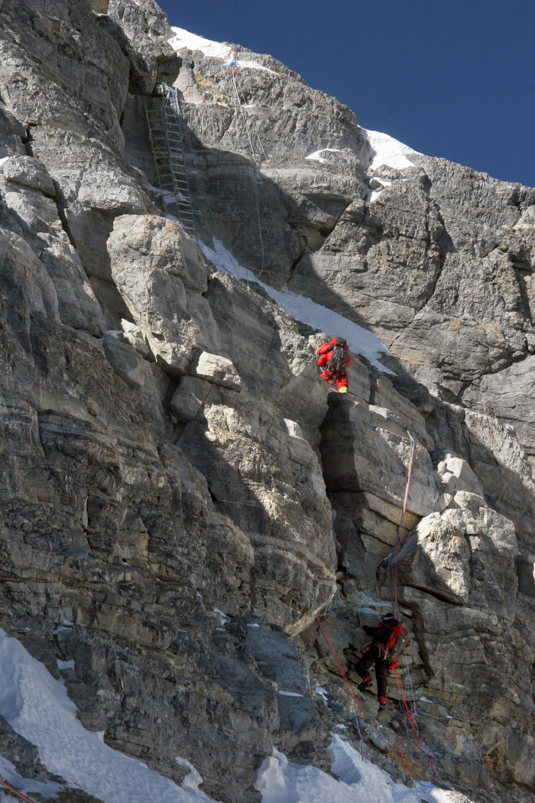 ladders on the hillary step everest expedition