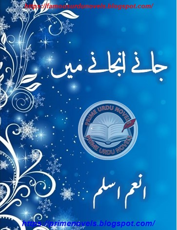 Jany anjany mein novel online reading by Anum Aslam Complete