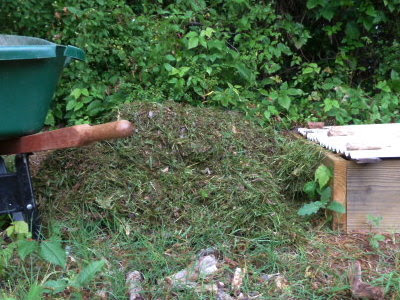 pile of grass clippings between wheelbarrow & compost worm bed