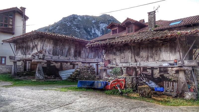 GATHOASTURIAS2