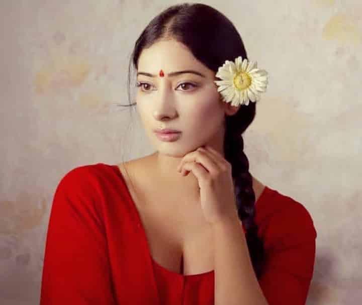 अभिनेत्री निहारिका रायजादा बायोग्राफी | Actress Niharica Raizada Lifestory In Hindi.
