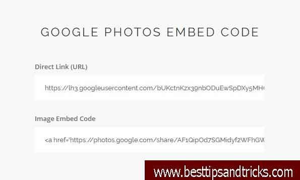 Google Photos Embed Code