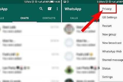 2 Cara Menyembunyikan Sedang Mengetik di WhatsApp dengan Mudah