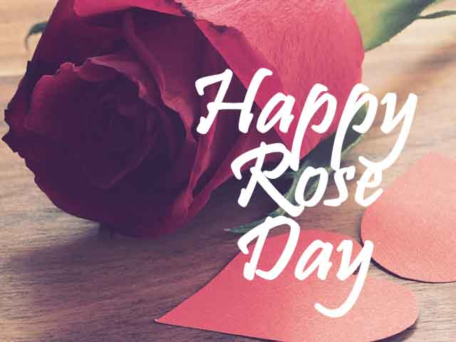 happy rose day my love images