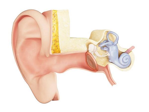 symptoms of inner ear infection