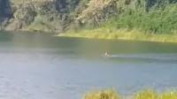Viral! Pria Pemberani Asal Banyumas Berenang di Telaga Ranjeng, Ini Faktanya