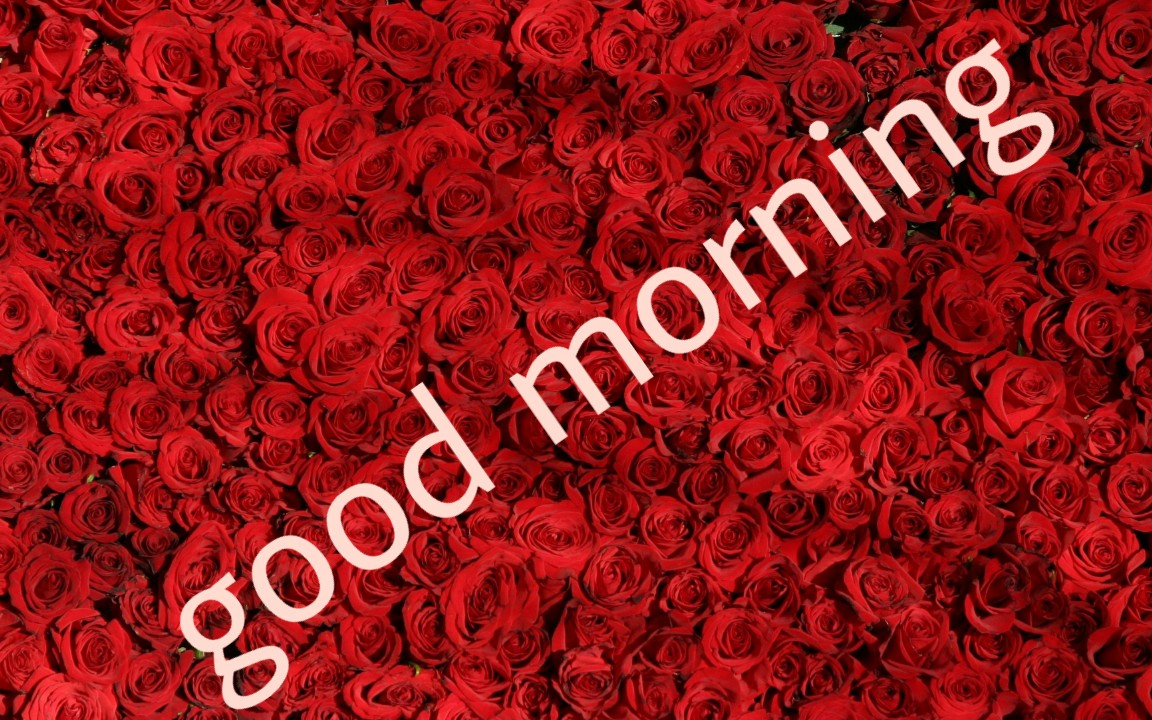 Good Morning Quotes In Hindi Good Morning Images With