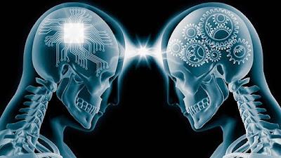 Süper Beyin için en yararlı 7 ürün