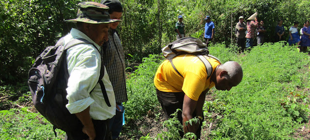 Los pueblos indígenas entienden que somos parte de la naturaleza, no de que estamos para conquistarla.PNUD/Ya'axche