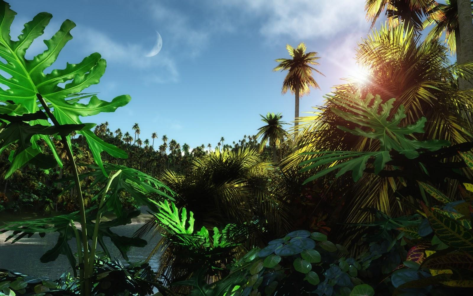 3D Nature Wallpapers -Jungle Wallpapers 2012|HD Desktop 3D ...