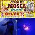 """IL MAGNIFICO SHOW """"GRAVITY"""" DEL CIRCO DI MOSCA A SILEA"""