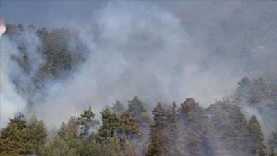 Sardinia as fires ravaged around 20,000 hectares
