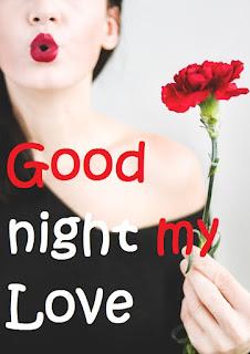 good night rose for boyfriend