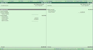 What is Financial Statement in Tally in Hindi