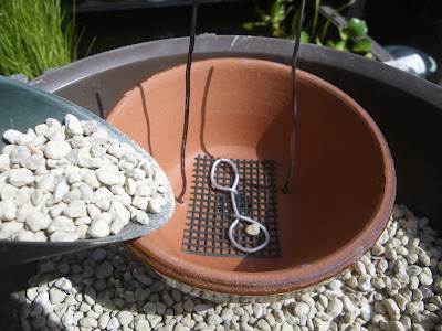 鉢 鉢底石