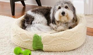 cama-mascotas-reciclando-sueter