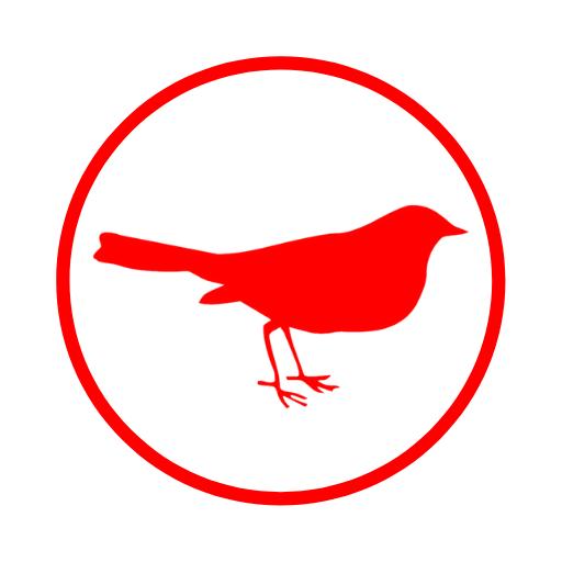 RedBird Seguridad Ofensiva