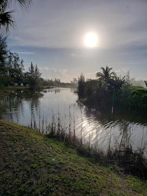 Sunrise over pond sorrounding golf course
