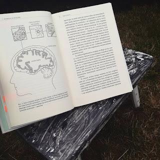 """""""Mózg rządzi. Twój niezastąpiony narząd"""""""