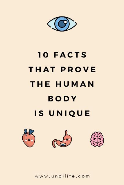 10 fakta tubuh manusia