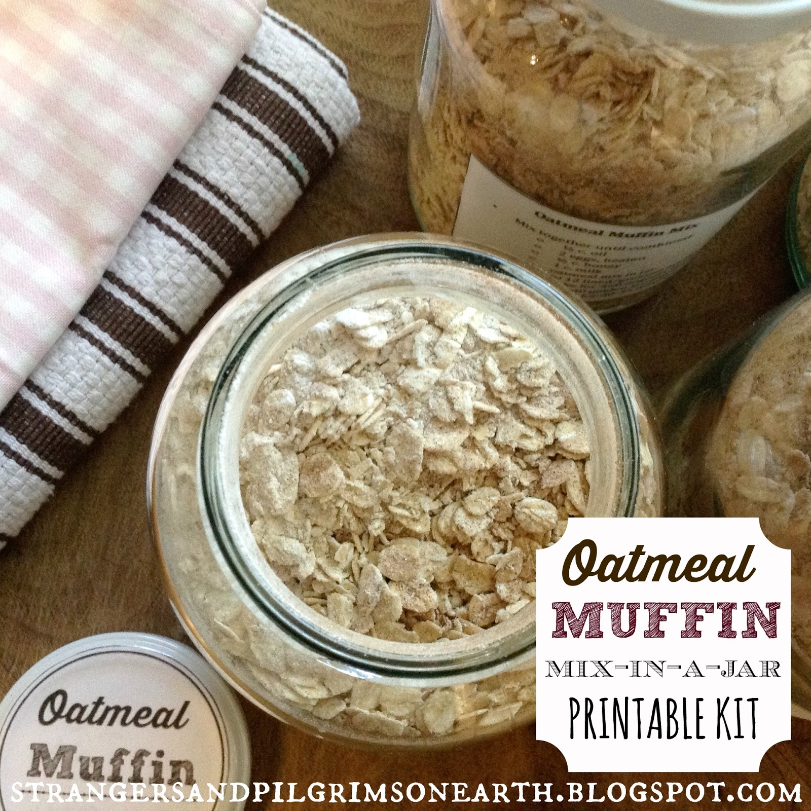 Make Your Own Oatmeal Muffin Mixes