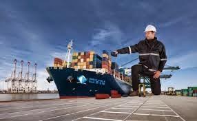 Vận tải biển quốc tế của Việt Nam sẽ đạt 40 – 46 triệu tấn