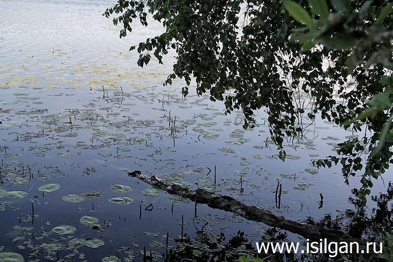 Озеро Жупино
