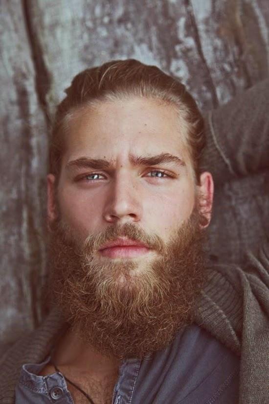 U Shaped Goatee 10 Cool Beard S...