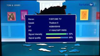 Fortune TV Sinyal Kecil