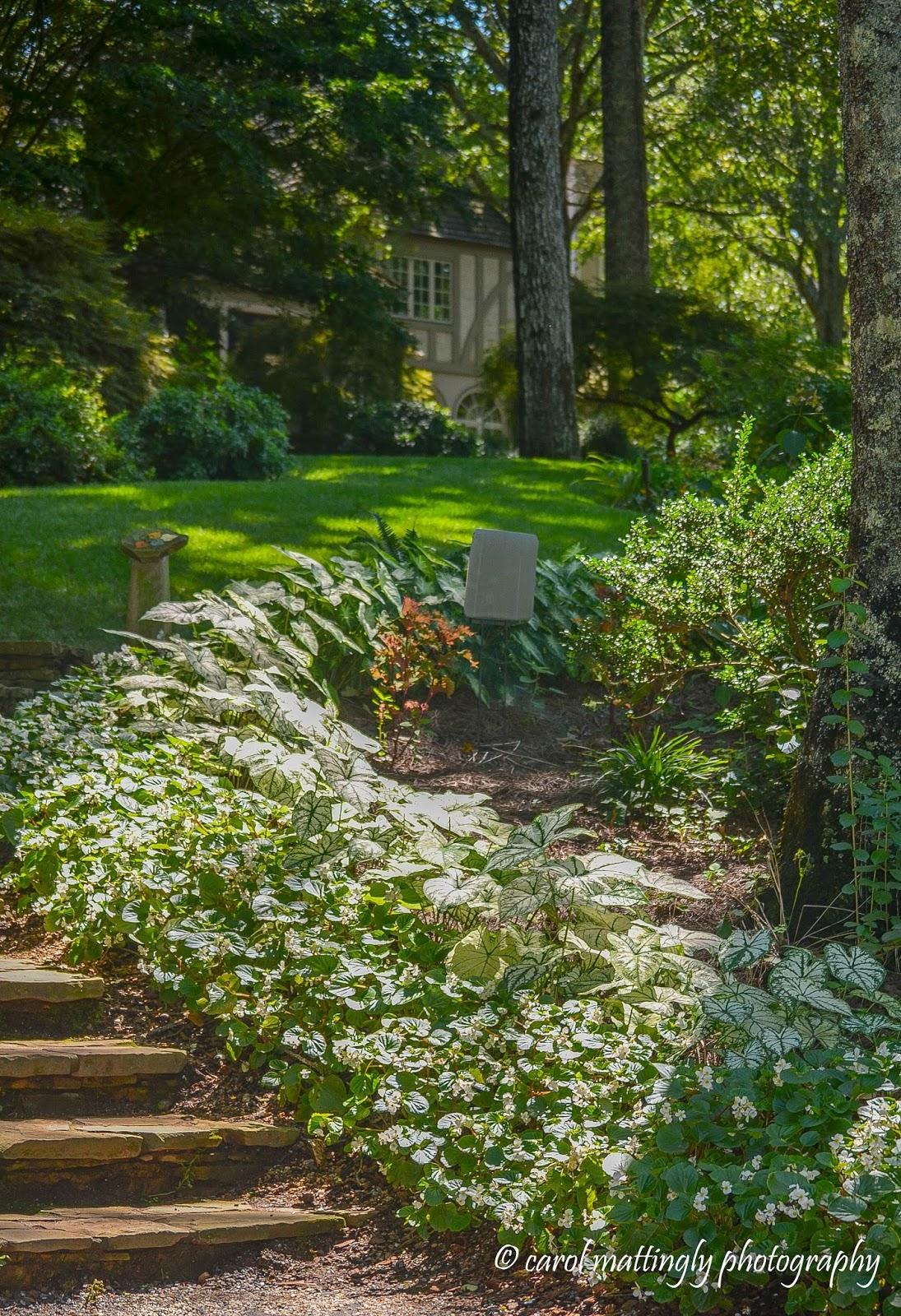Carol Mattingly Photography: The Manor House, Gibbs Gardens