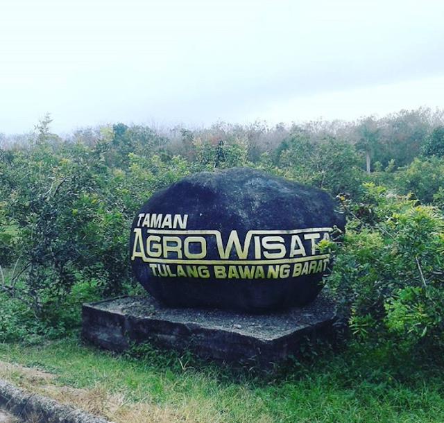 Pesona Wisata Tulang Bawang Tulang Bawang Barat Realita Lampung
