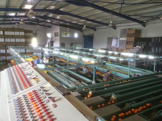 Αργολίδα: Συσκευαστήριο ζητά συσκευαστές/στριες για εποχιακή εργασία