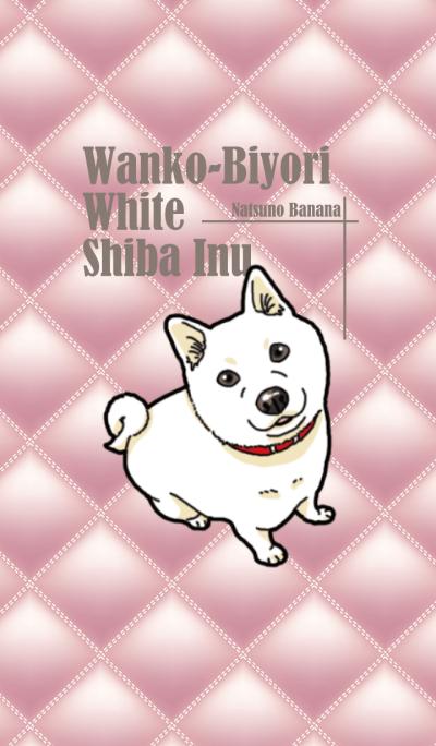 Wanko-Biyori White Shiba Inu