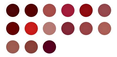 shade note cosmetics lip liquid