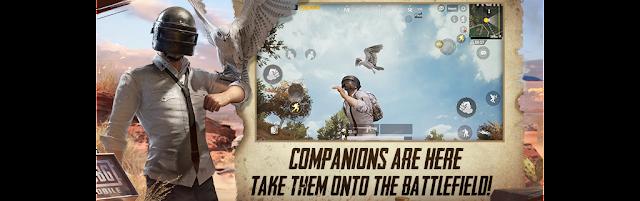 PUBG Mobile Companions