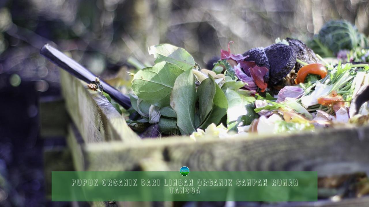 Pupuk Organik dari Limbah Organik Sampah Rumah Tangga