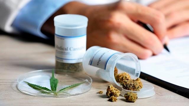 A 350 pesos uruguayos aumenta El precio de venta del cannabis en  Uruguay