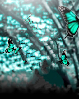 Beautiful Butterfly Background Free Stock Image