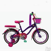 16 rmb venice ctb sepeda anak