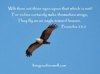 Proverbs 23:5