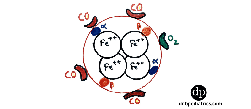 CO poisoning - How carbon monoxide attached to Hb Molecule