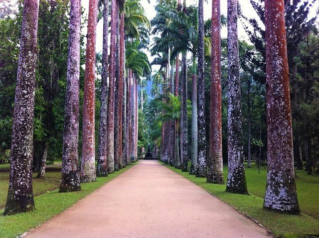 entrada jardim botanico rj