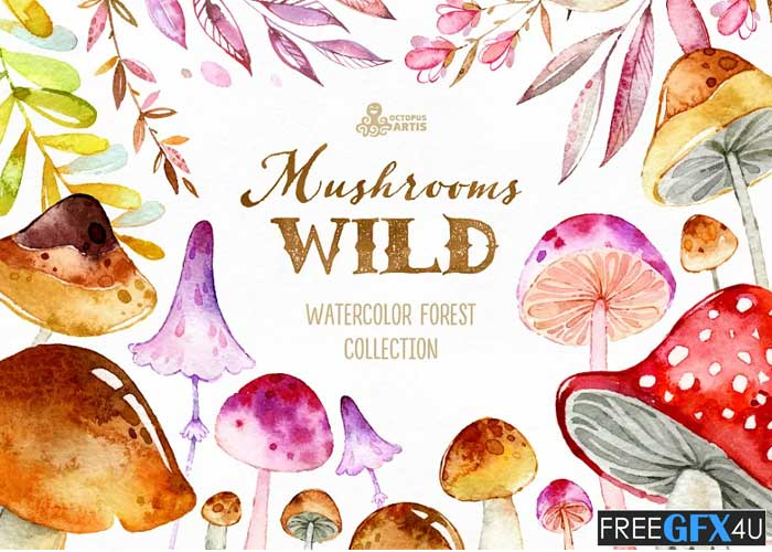 Wild Mushrooms Forest Collection