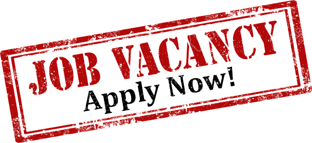 Job Vacancy villa 2020