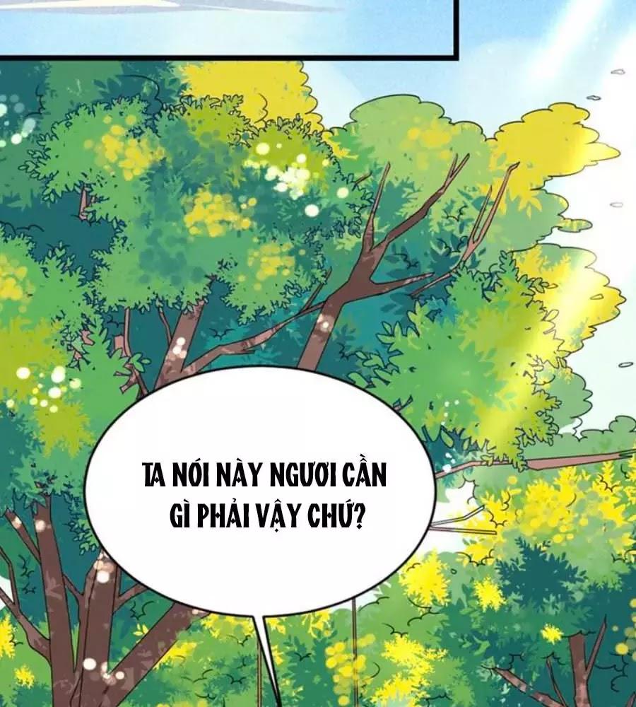 Thái Tử Điện Hạ, Nô Tài Có Hỉ Rồi Chapter 17 - Trang 14