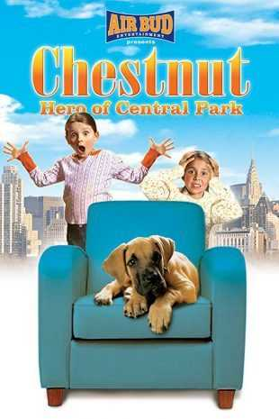 Chestnut Hero Of Central Park 2004 BRRip 720p Dual Audio In Hindi English