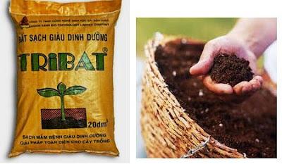 Đất sạch tribat dinh dưỡng
