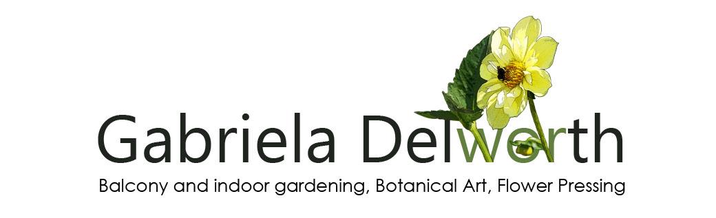 Balcony and Indoor Gardening in Toronto, Botanical Art, Flower Pressing.
