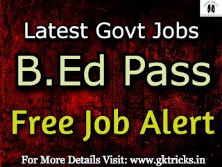 b.ed pass jobs
