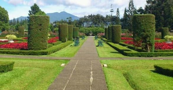 Wisata Ci Anjur Taman Bunga